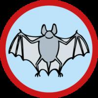 skauting-program-odborka-skauti-c-53