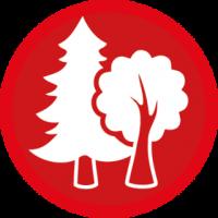 skauting-program-odborka-skauti-z-68